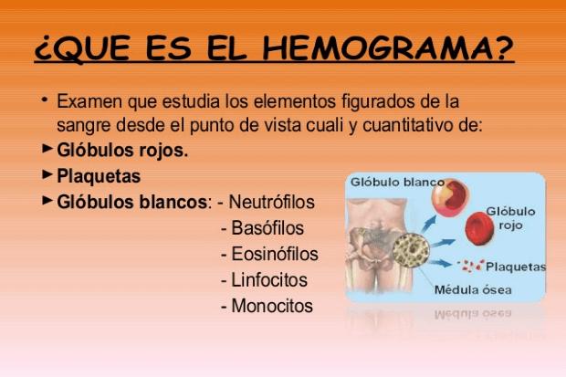 explicacion que es un hemogrma